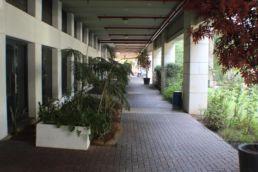 משרד להשכרה בפארק המדע